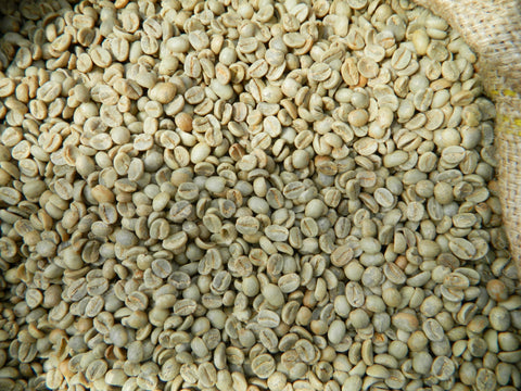 India Mysore Nugets Extra Bold green coffee beans r
