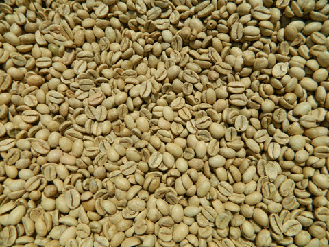 India Arabica Monsooned Malabar unroasted coffee K