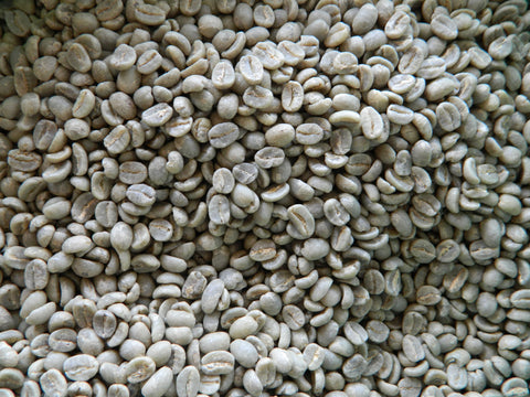 Kenya AA Top raw coffee close up 6 15