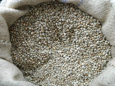 Robusta Madagascar raw coffee beans P