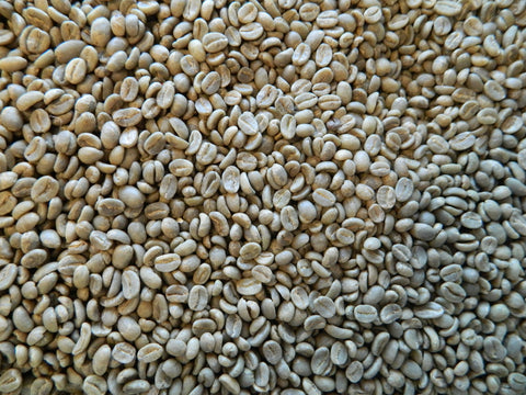 Colombia Tolima Organic green coffee beans E