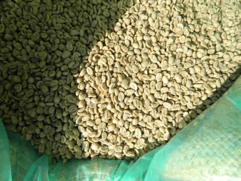 Haiti Blue Mountain Organic Green Coffee Beans n
