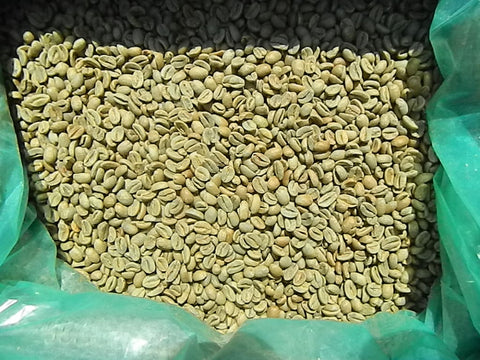 Gesha Natural Panama La Berlina unroasted coffee beans Y