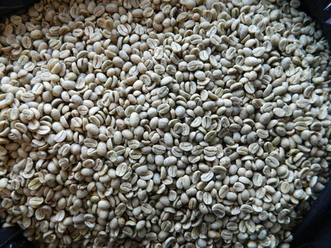 Puerto Rican Arabica raw coffee G
