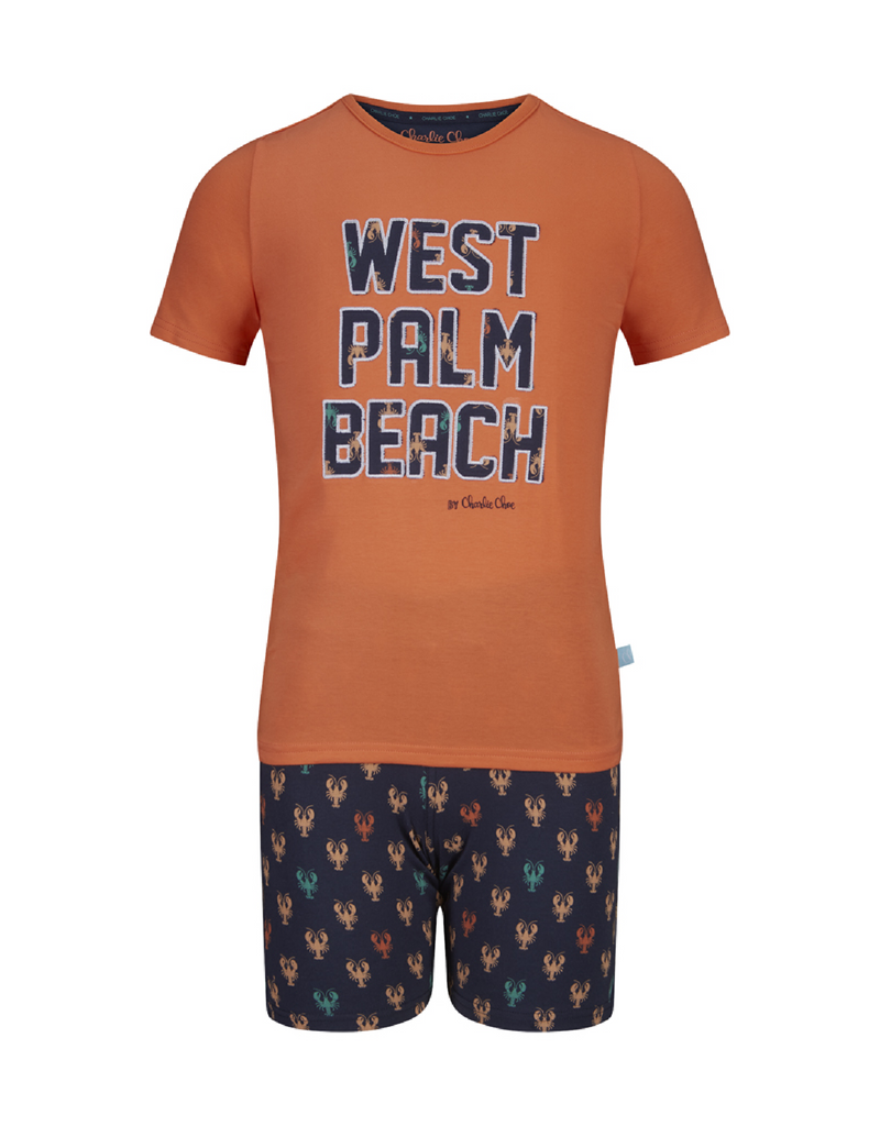 Jongens Boys short set van Charlie Choe in de kleur Faded orange & navy & aop in maat 146, 152.