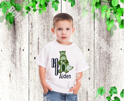 Boys dragon birthday T shirt