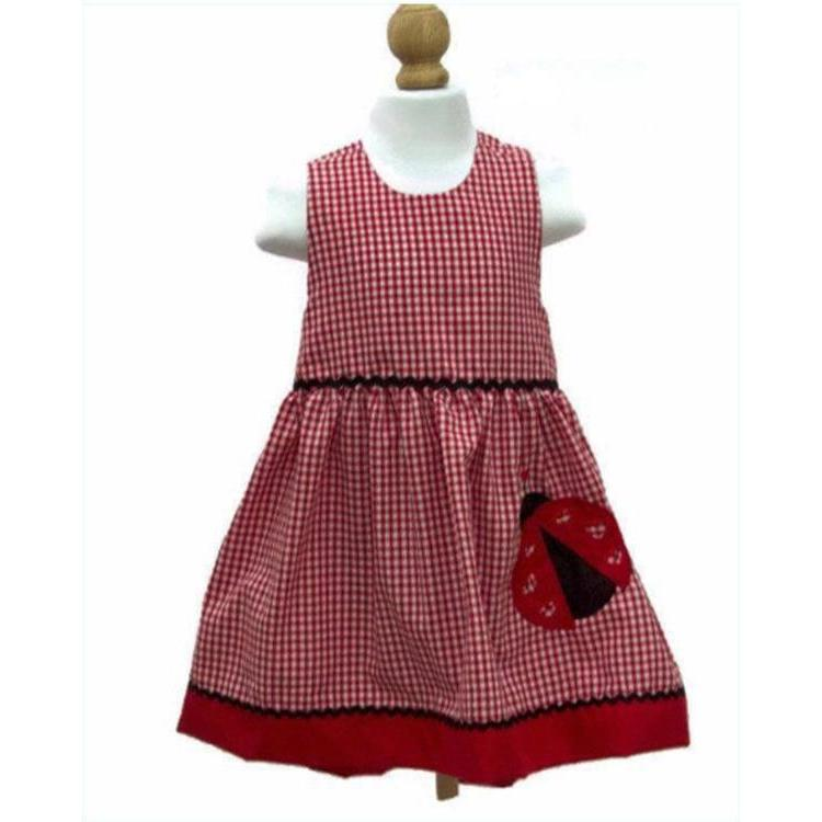 LADYBUG BIRTHDAY DRESS  Ladybug Girl dress Ladybug red gingham dress