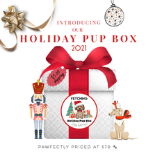 Load image into Gallery viewer, Fetching's Mystery Bag