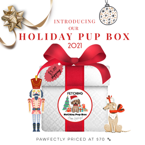 Fetching's Mystery Bag