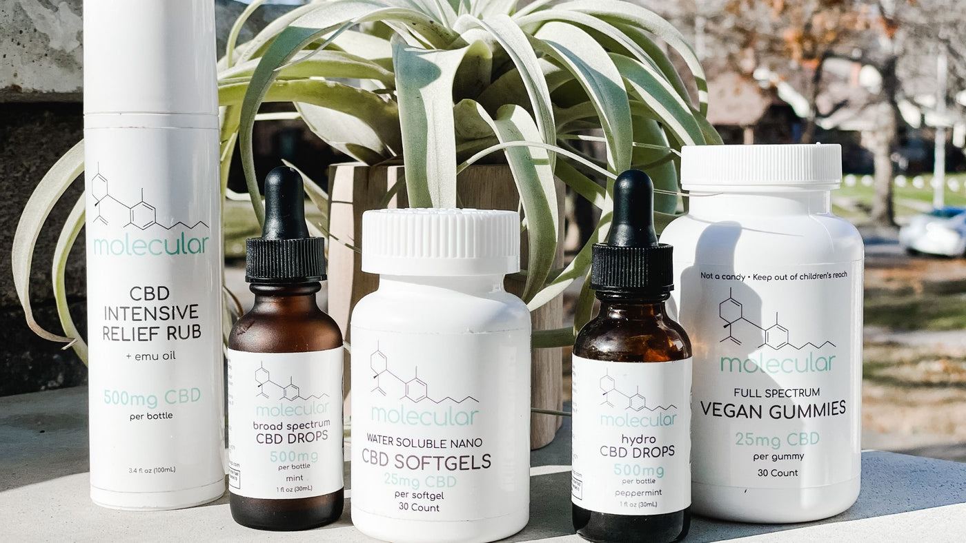 A CBD Wellness Brand You Will Love & Trust