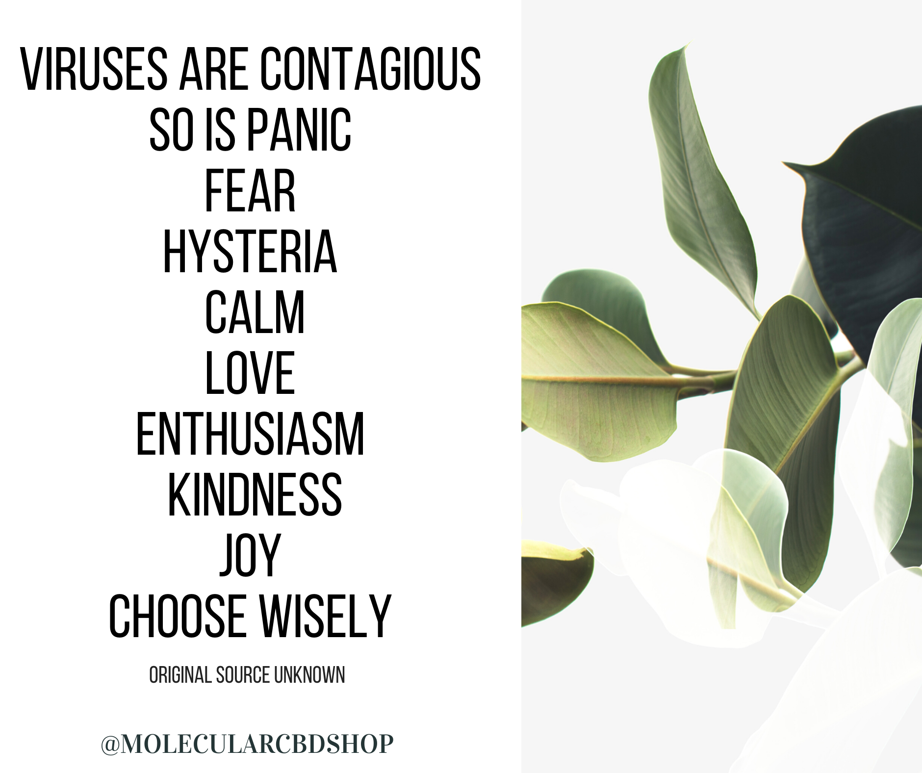 Viruses are contagious  So is panic  Fear  Hysteria  Calm Love  Enthusiasm  Kindness Joy   Choose wisely