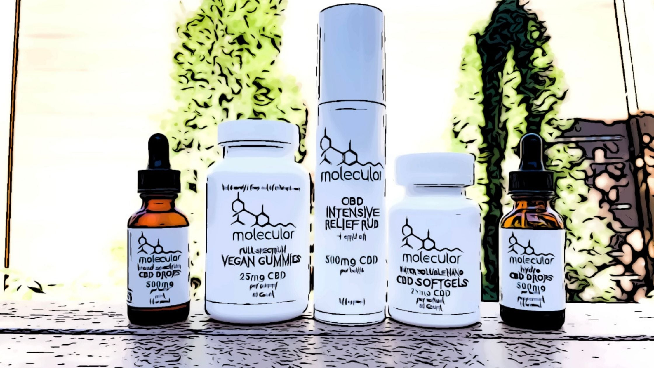 Molecular CBD Shop Wellness Products