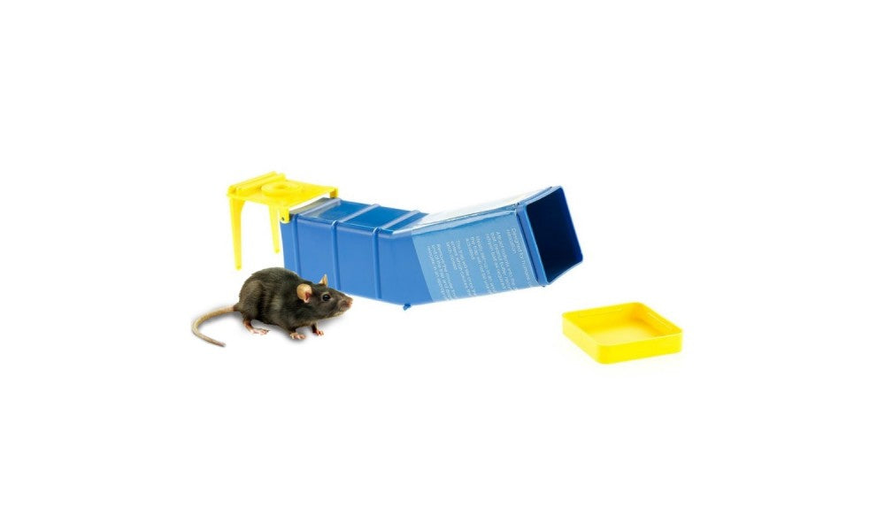 Clever Mouse Trap