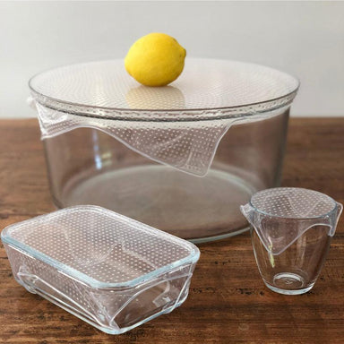 Seed and Sprout Reusable Clear Wraps