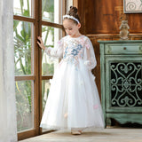 Long Sleeved Lace Princess Flower Girl Dresses Pageant Kids Ball Gown Party Tulle Puffy Dress