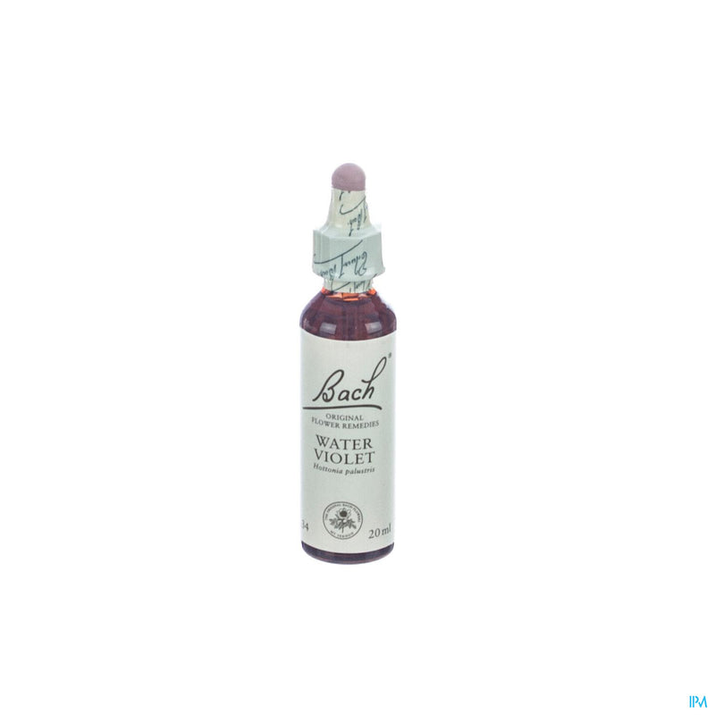 Bach Flower Remedie 34 Water Violet 20ml