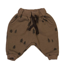 Load image into Gallery viewer, Kidwild Organics Organic Vintage Woodland Joggers - Rust