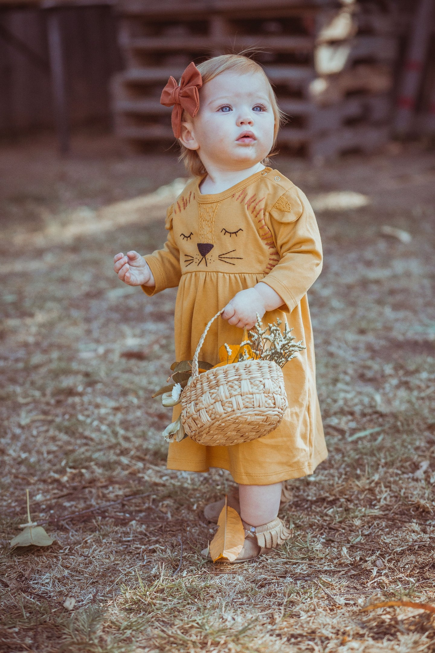 Wild Wawa Organic Lion Dress