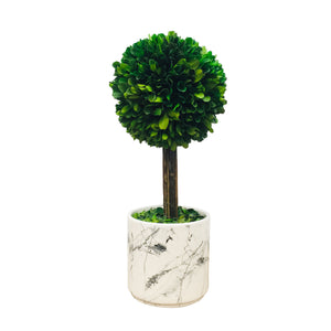 Grn Boxwood Ball W/Marble Pot