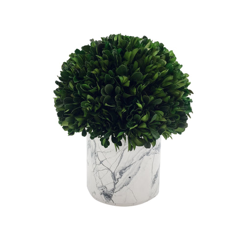 Green Boxwood Ball With Marble Pot