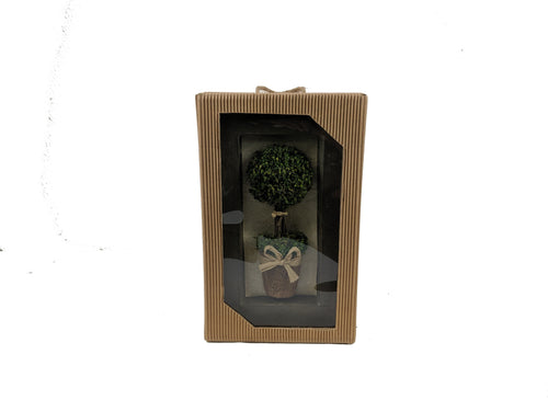 Farmhouse  Topiary In Picture Frame Wall Decor - Galt International