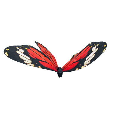 Org/Wh/Bla Butterfly  Red/Black