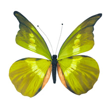 Load image into Gallery viewer, Green Butterfly