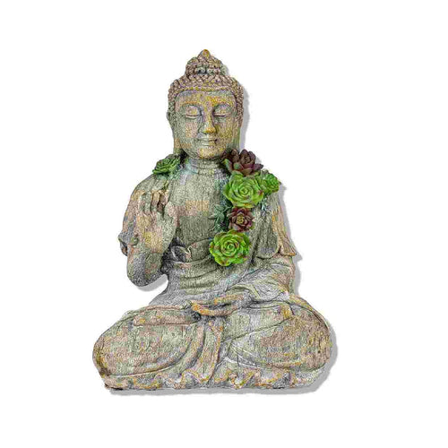Buddha with Succulent Plants