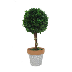 "Green H14""Boxwood Topiary W/ Cement Pot 1/6Pcs"