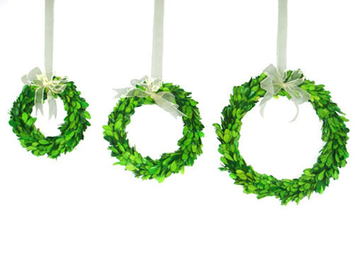 Green Set of 3 Boxwood Rings With Ribbon