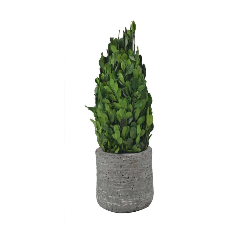 INDUSTRIAL BOXWOOD WILLOW CEMENT TOWER BOXWOOD TOPIARY PLANTER, GRAY - Galt International