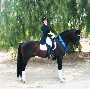 Mackenzie Hamblin and holsteiner dressage stallion Chevalier