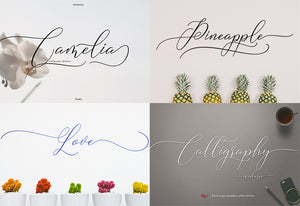 The Best Seller Fonts Bundle - 5 Cool Fonts-Fonts-Artixty