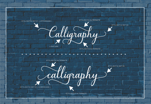 5 Beautiful Script & Calligraphy Fonts Bundle-Fonts-Artixty