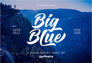 57 Premium Fonts - Script, Sans, Display With Extras-Fonts-Artixty
