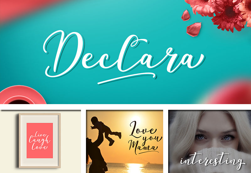 The Delight Font Bundle - 66 Fonts + Extras-Fonts-Artixty
