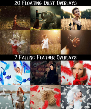 The Picture Perfect Mega Overlays Bundle - 875+ Resources-Graphics-Artixty