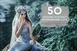 The Majestic Wedding LUTs Collection - 1000+ Presets-Add-Ons-Artixty