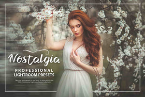 3100 Extraordinary Lightroom Presets Bundle-Add-Ons-Artixty