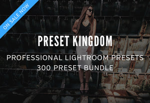 300 Professional Lightroom Presets Bundle-Add-Ons-Artixty