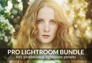 605 Professional Lightroom Presets Bundle-Add-Ons-Artixty