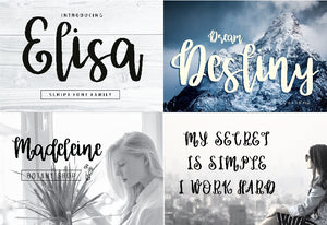 The Big Bundle Of 25 Premium Fonts-Fonts-Artixty