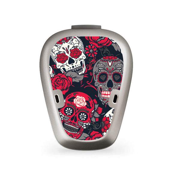 Day of the Dead skin for BAHA 5