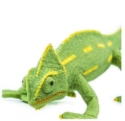 Incredible Creatures - Veiled Chameleon Baby