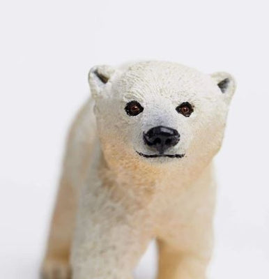 Wild Safari Sea Life - Polar Bear Cub