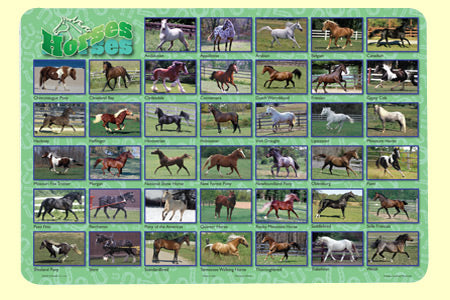 Horses Placemat - HOR-1