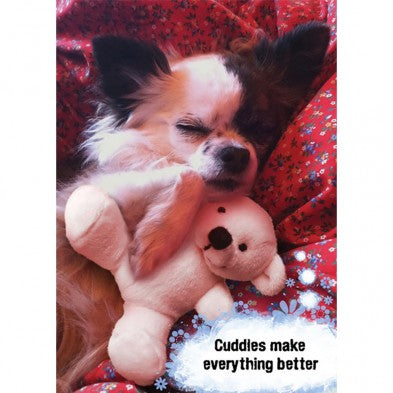 Better With Cuddles, Support Card