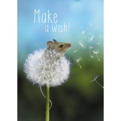 Wishes Come True, Birthday Card