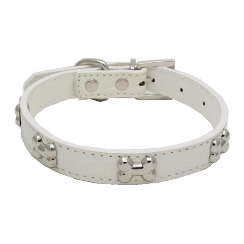 Alligator Leather Bone Collar