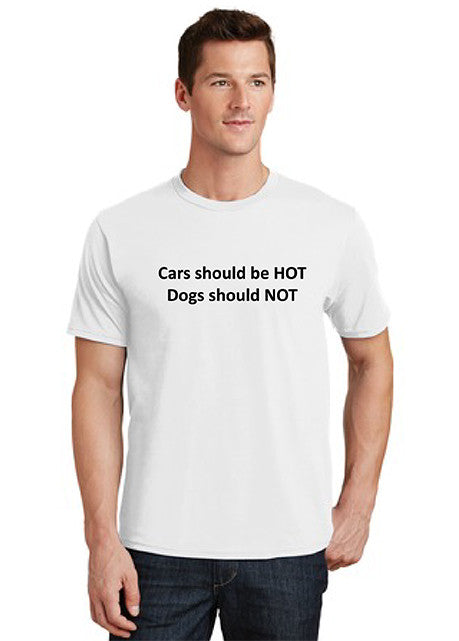 Cars should be hot - Dogs should not